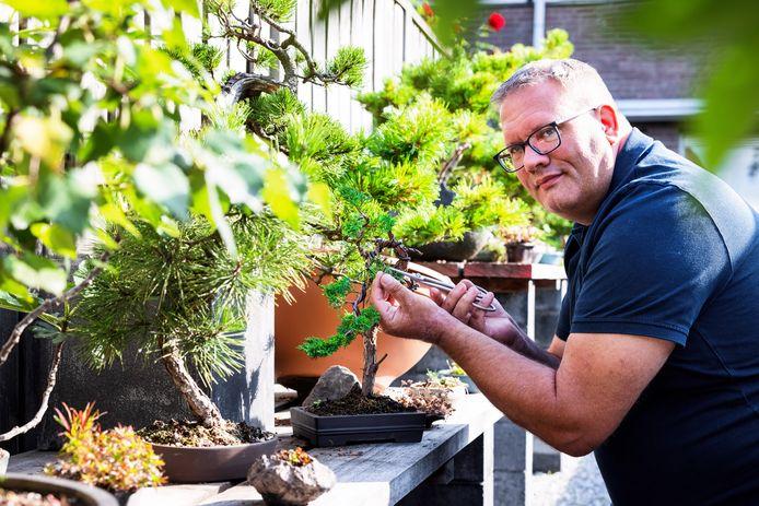 Corné de Peffer werkt aan zijn Bonsaibomen
