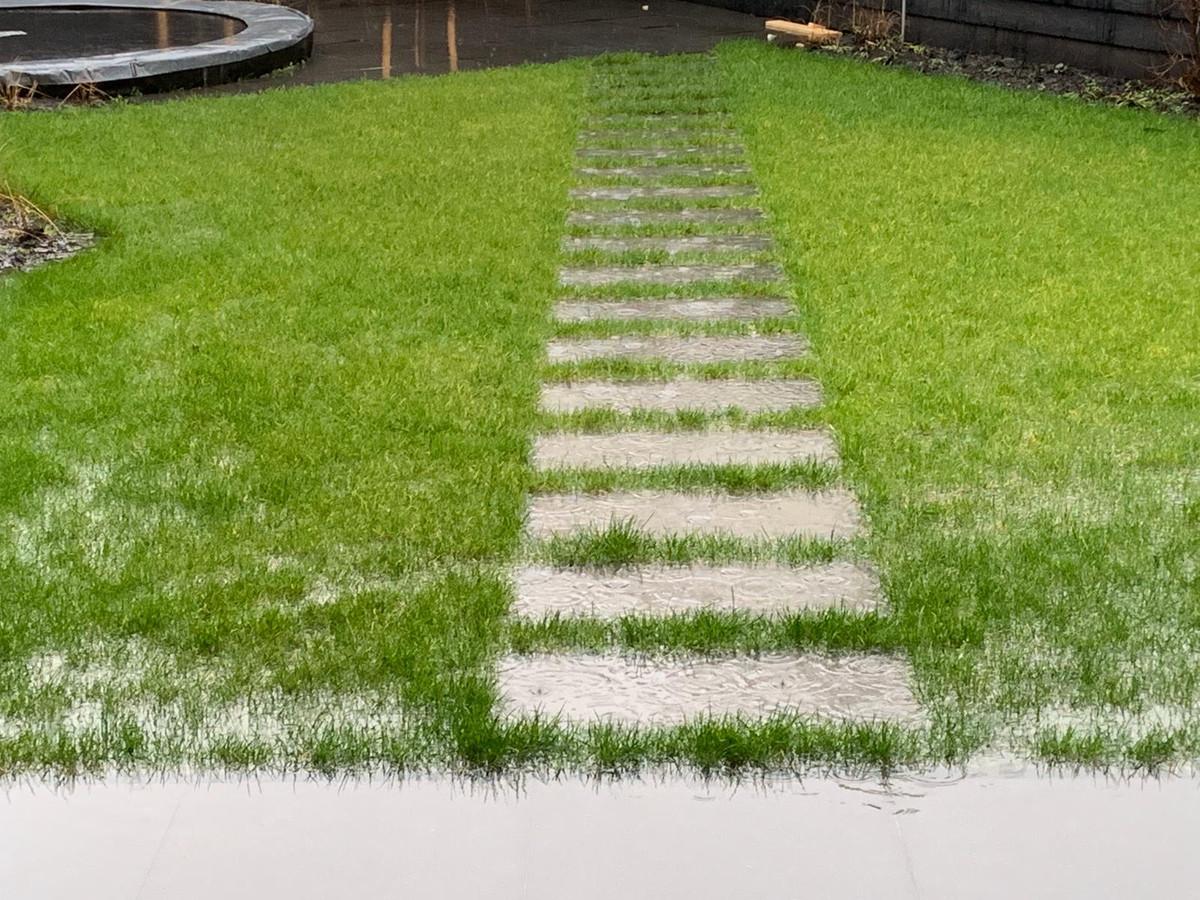 De tuinen stonden eerder dit jaar nog blank omdat het water niet in de grond wilde zakken.
