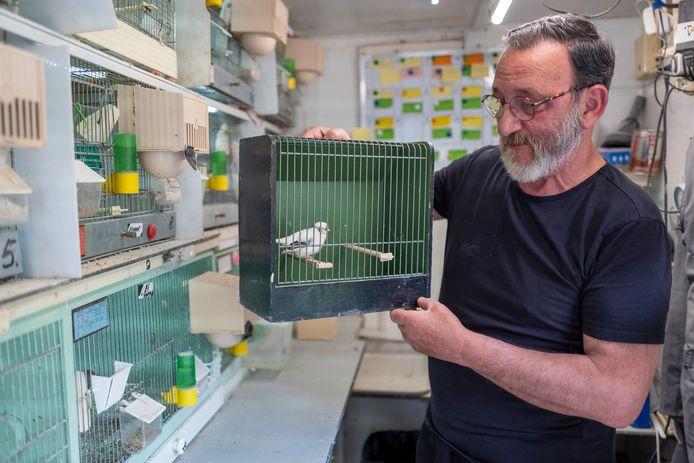 Ad Otten is penningmeester van de vogelverening Vogellust