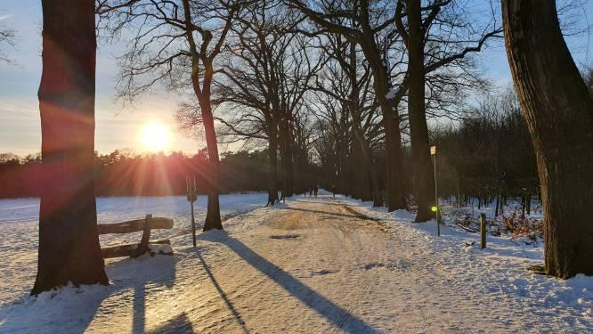 Agentschap Natuur en Bos en stad weren sluipverkeer op Wortel Kolonie