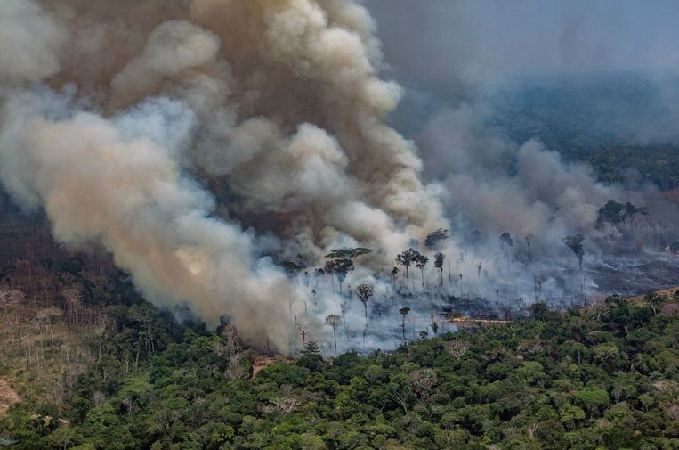 Een luchtfoto van de Amazone. Beeld AFP