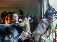 Overleed hond Roxy door anti-vlooienmiddel? 'Alle pups werden ziek'