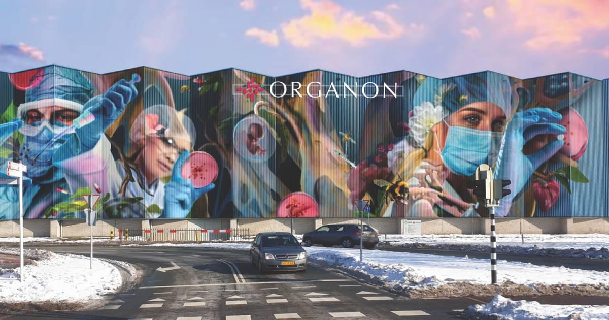 Organon vervangt omstreden logo op muurschildering
