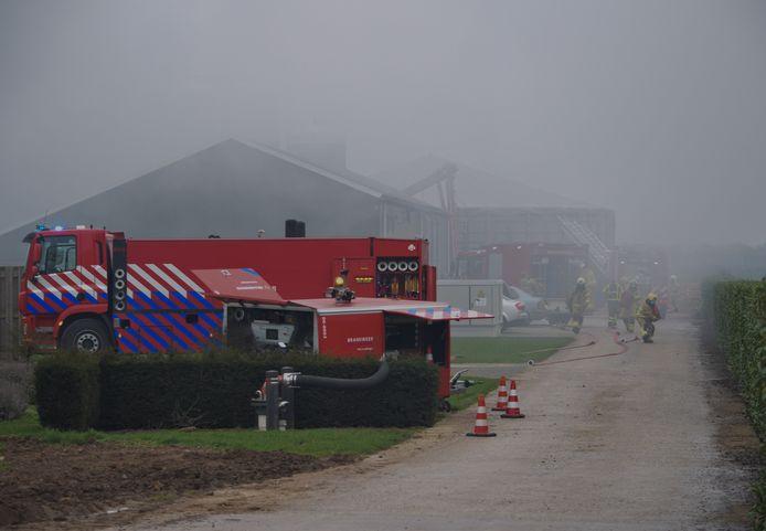 De brandweer werkt hard om een grote brand in een varkensstal bij Netterden te bestrijden.