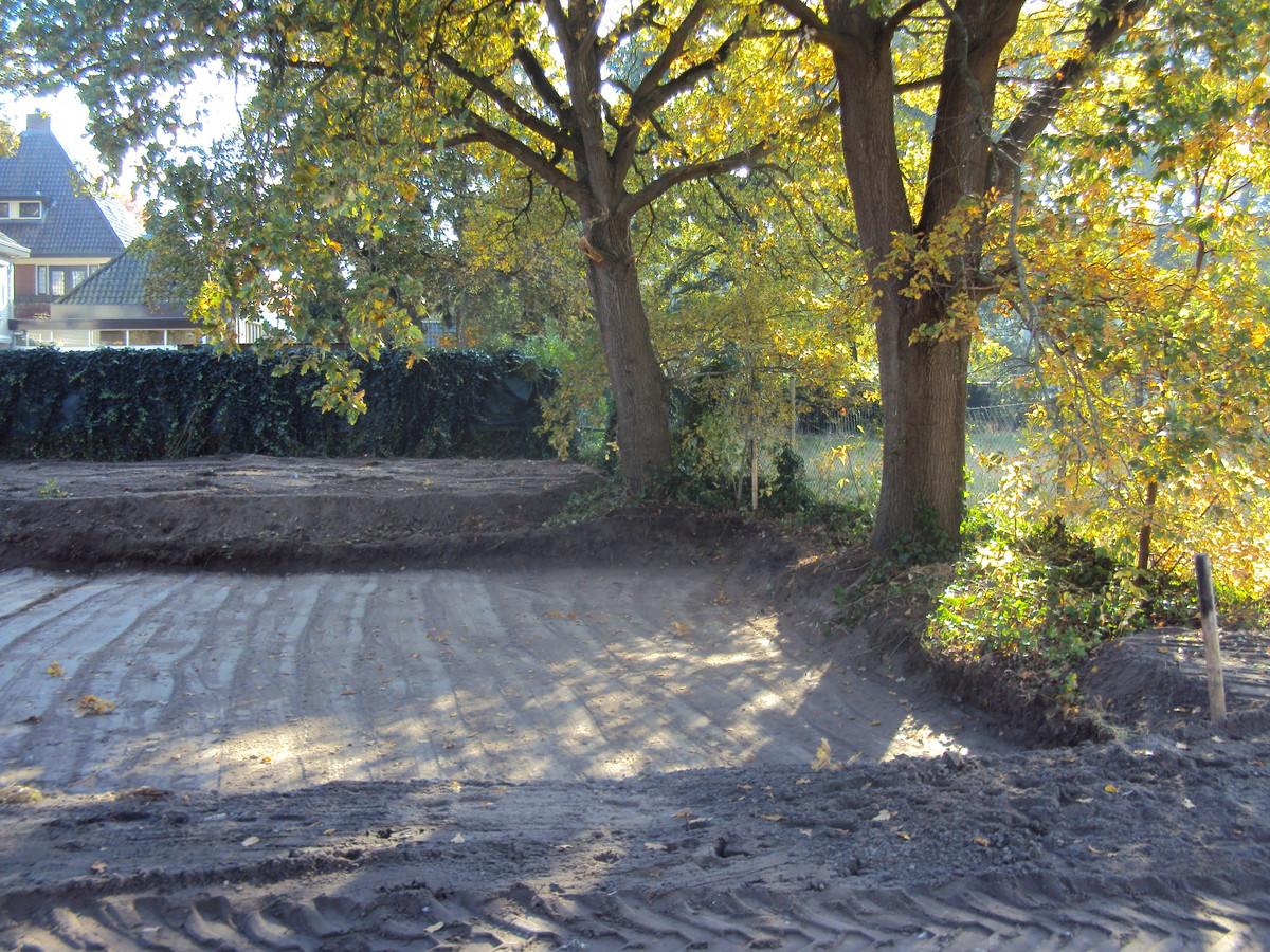 Al tijdens de ontgravingswerkzaamheden zag Boom & Bosch het misgaan met de waardevolle zomereik.
