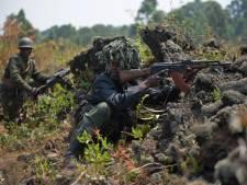 130 rebelles tués dans les combats au Nord-Kivu