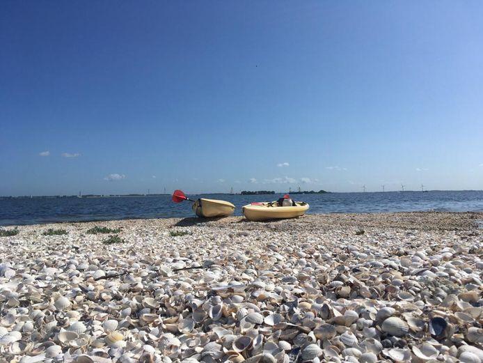 Ook vanaf de oever leent de Grevelingen zich bij uitstek voor recreatie op en langs het water.