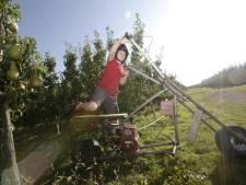 Herman bouwt een bongerdbrommer voor tijdens de perenoogst: 'Dit tovert een glimlach op de gezichten'