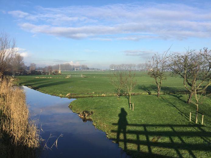De toekomstige plek van het innovatiecentrum van Lely aan de Zuidbuurt in Maassluis.