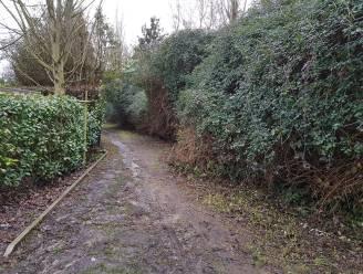 Gemeente weigert verkaveling met 9 woningen na negatief advies Natuur en Bos