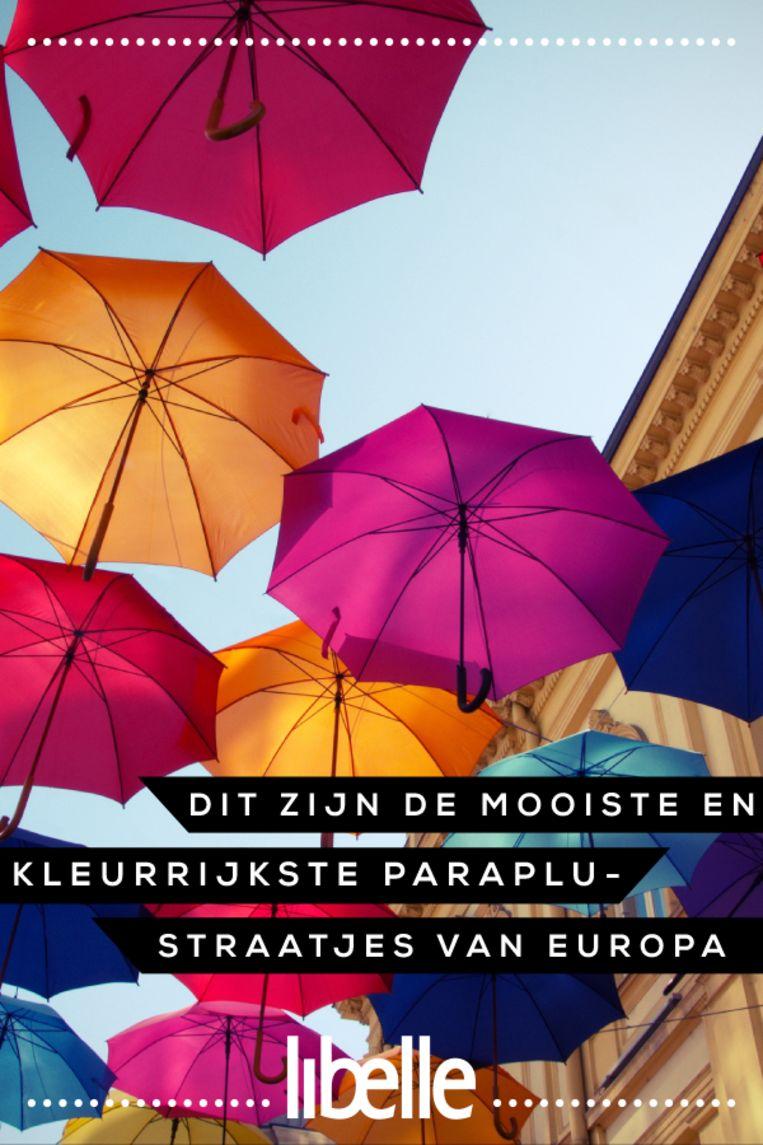Paraplustraatjes Beeld Libelle Pinterest