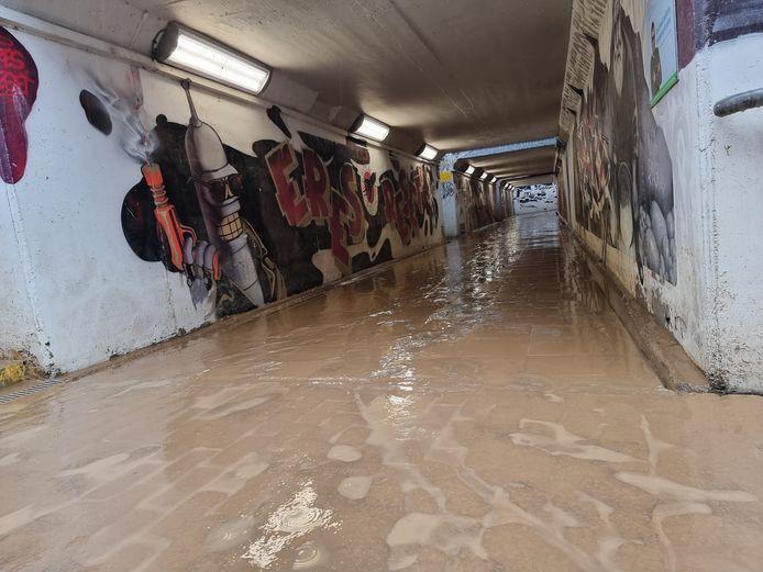 Zware overstromingen zoals in de voetgangerstunnel van het station van Buizingen: we kunnen ze wel degelijk voorkomen, legt professor hydraulica Jean Berlamont uit.