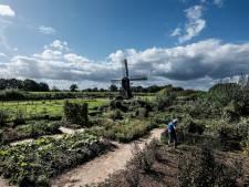 Bezwaar bewoners tegen 'niet neutrale' gespreksleider windmolens Doetinchem: 'Met deze dame gaan wij sowieso niet aan tafel'