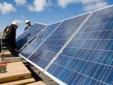 Pleidooi van Bee One: 'Borne moet meer investeren in collectieve zonnepanelen'