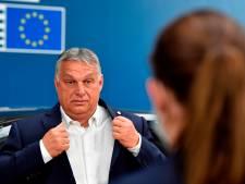 Viktor Orbán splijt Europa: waarom niet álle landen een hekel aan de dwarse Hongaar hebben