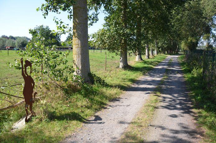 Het Catharinastraatje in Daknam.