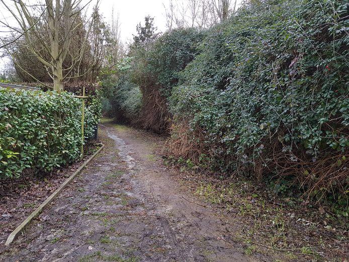 De holle weg aan het einde van de Esstraat in Sint-Stevens-Woluwe zou bedreigd worden door de verkaveling.