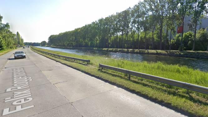 """Populierenrij langs kanaal kan niet gered worden: """"Bomen worden vervangen door inheemse soorten"""""""
