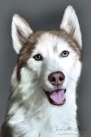 ,,Ik heb ook geprobeerd mensen te tekenen, maar huisdieren zijn veel leuker.''