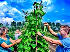 Leren over flora en fauna: spiek eens op het erf bij deze bijzondere initiatieven