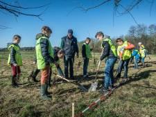 'Te weinig groen rond vier basisscholen Etten-Leur'