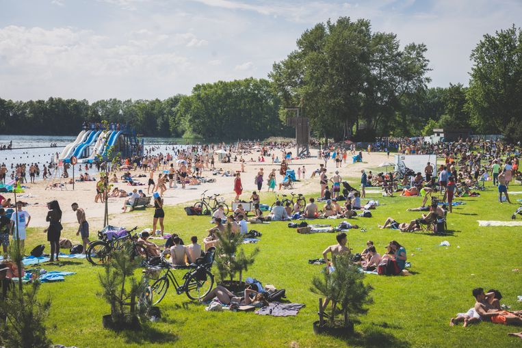 De Blaarmeersen zoals de stad het wil: rustig genieten, luieren, zonnen en zwemmen, zonder amokmakers. Beeld Wannes Nimmegeers