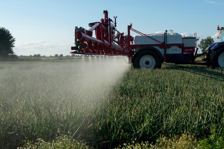 Landbouwgif wordt over de uien gespoten.