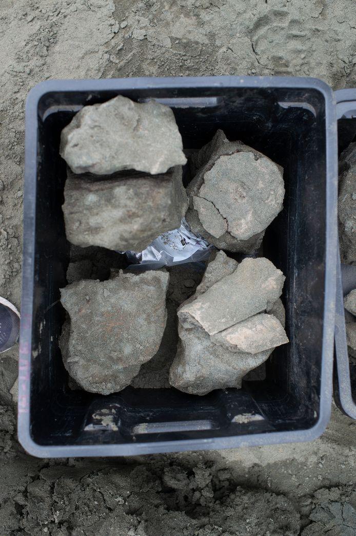 Op de site werden al skeletten van drie walvissen gevonden