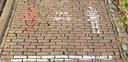 Op de website laat het Streekarchivariaat Noordwest-Veluwe al een voorbeeld zien van een foto die tekenend is voor corona.