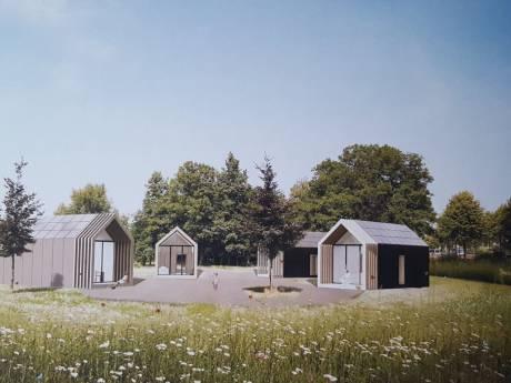 Hoe de 'tiny-woonwijk' in Oud-Beijerland eruit komt te zien