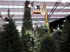 Tuincentrum Coppelmans schept kerstsfeer in zomers weer