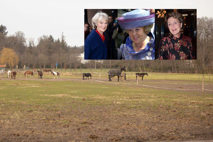 Deze gronden zijn van de prinsessen. De gemeente Soest wil dit gebied 'ontwikkelen'.