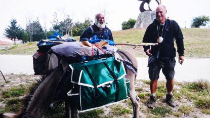 Met de (koppige) ezel naar Compostella