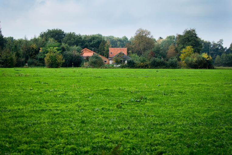 De boerderij in Ruinerwold. Beeld ANP