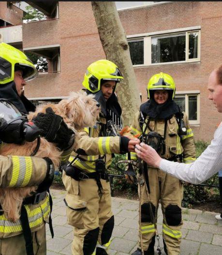 24 bewoners kunnen niet naar huis na brand in hun flat
