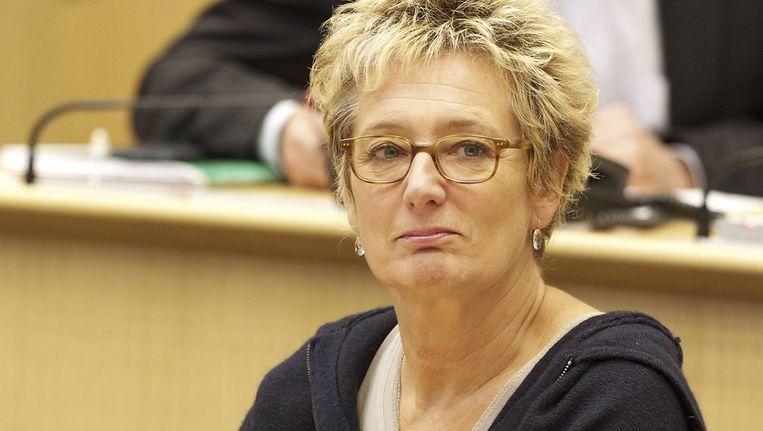 russels minister van Leefmilieu Evelyne Huytebroeck (Ecolo).