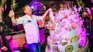 Roger van Damme trakteert op taart voor verjaardagseditie Tomorrowland