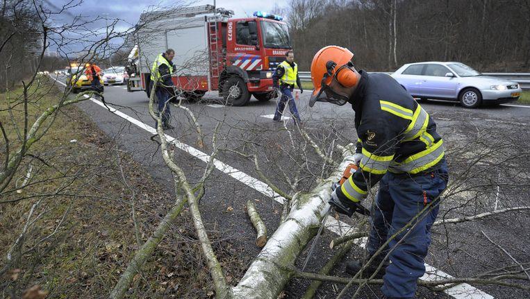De brandweer haalt een boom van de N281 ter hoogte van Heerlen. Als gevolg van de storm zijn veel bomen omgevallen. © ANP Beeld