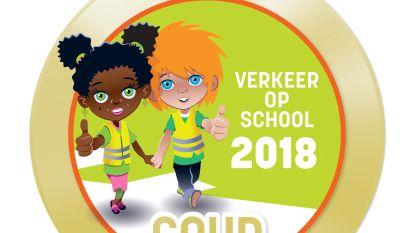 SBS Winkelomheide bekroond met gouden Verkeer op School-medaille