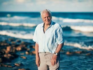 Angstige momenten voor David Attenborough: presentator en team aangevallen door ijsbeer