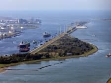 Rotterdam geeft wél groen licht voor energieplannen: 'Meer dode vogels door huiskatten dan door windmolens'