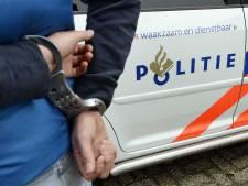 Haagse jeugdbende opgerold