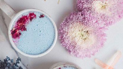 Moon milk is de nieuwste wellnesstrend die je helpt slapen