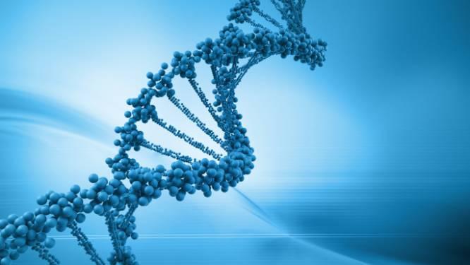 Voor het eerst volledig neanderthaler-DNA ontcijferd