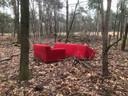 In het bos nabij Strabrechtse Heide.