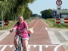 'Te veel auto's in Willemstadse fietsstraat'