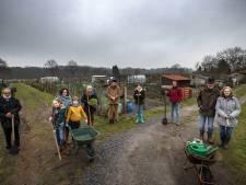 Petities voor behoud van volkstuinen en natuur buitengebied Aalst: 'Niet alleen een plek waar groente en fruit wordt verbouwd'