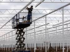 Nieuwe vereniging Zuilichemse Bewoners Belangen: hoeveelheid arbeidsmigranten is problematisch