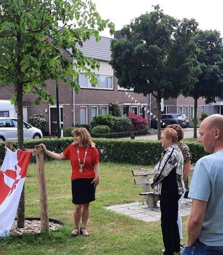 Zwaar getroffen Heesche familie omarmt gedenkboom voor coronaleed: 'Ons pap had dit mooi gevonden'