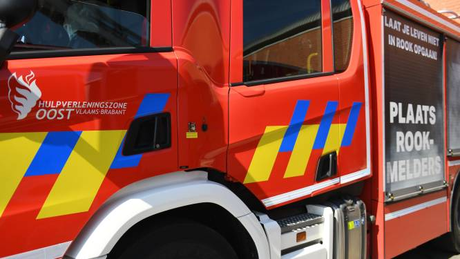Bosbrand in Everberg is snel onder controle